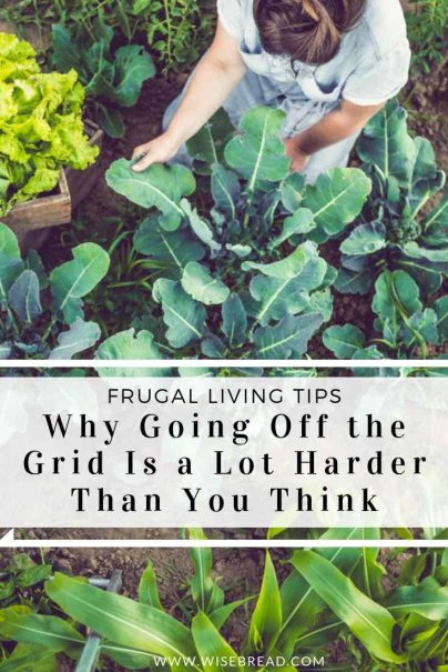 Want to get off the grid? Whether you want to go along the low-tech path, or be more sustainable, or get away from the financial system.Any of these choices have both costs and benefits. Take a look at some of your options! | #offgrid #sustainableliving #selfsufficient