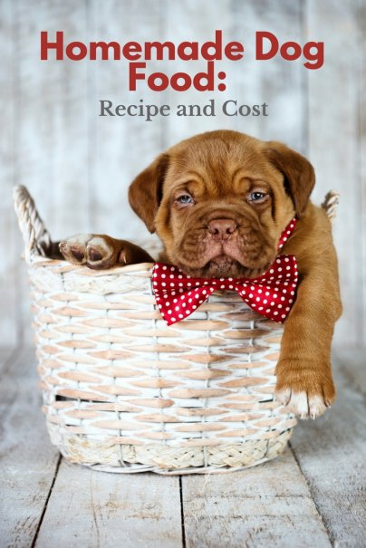 Homemade Dog Food Recipe And Cost