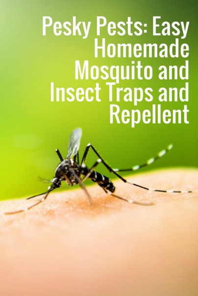 Pesky Pests: Easy Homemade Mosquito and Insect Traps and Repellent