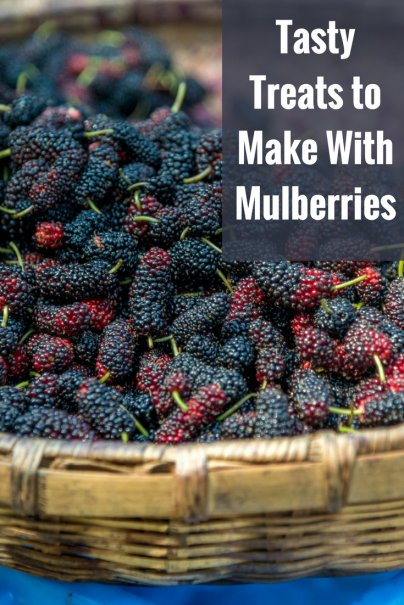 Tasty Treats to Make With Mulberries