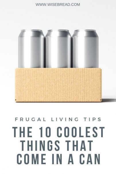 Aluminium cans are great for preserving and storing food! It's also lightweight, easier to recycle, so its more sustainable than plastic. Check out these 10 cool items that come in can! | #cannedfoods #aluminiumcan #frugaltips