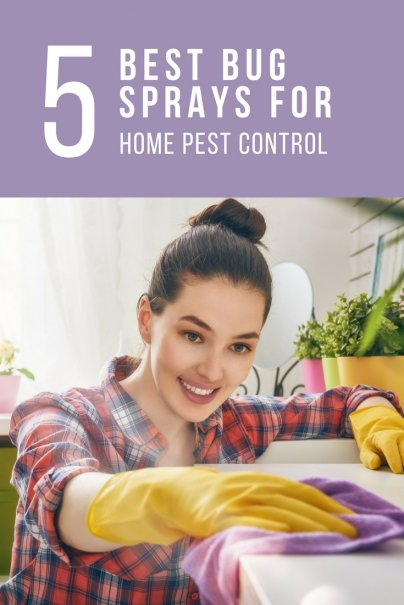 The 5 Best Bug Sprays for Home Pest Control