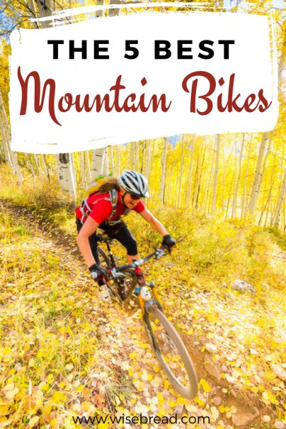 The 5 Best Mountain Bikes