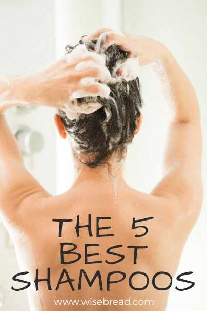 The 5 Best Shampoos