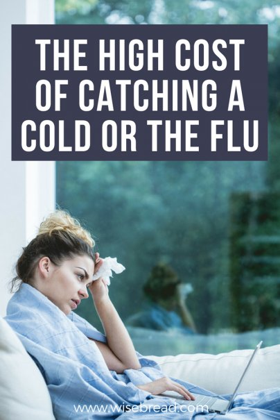 The High Cost of Catching a Cold or the Flu
