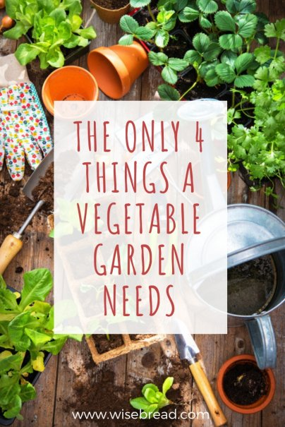 The Only 4 Things a Vegetable Garden Needs