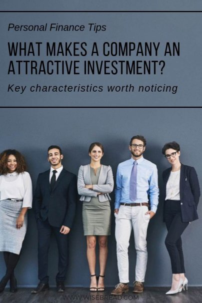 What Makes a Company an Attractive Investment?