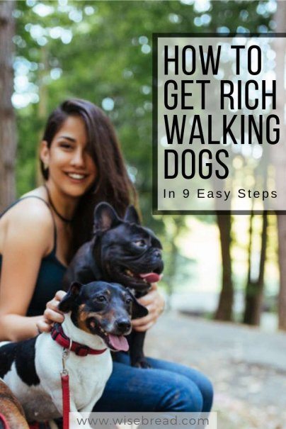 Get Rich Walking Dogs in 9 Easy Steps