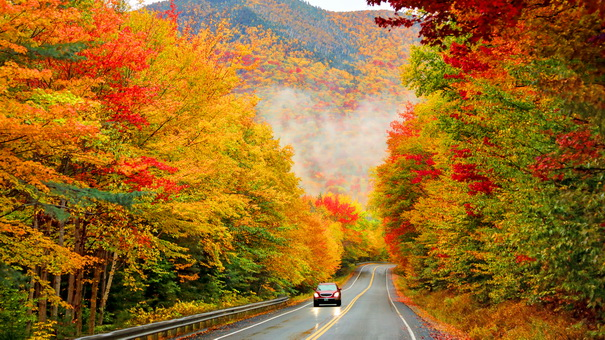 6 Breathtaking Fall Foliage Drives To Take This Year