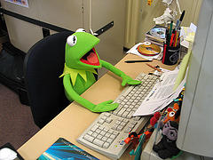Kermit searching for bargains